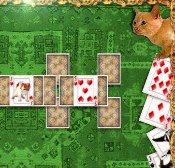Kitten Solitaire